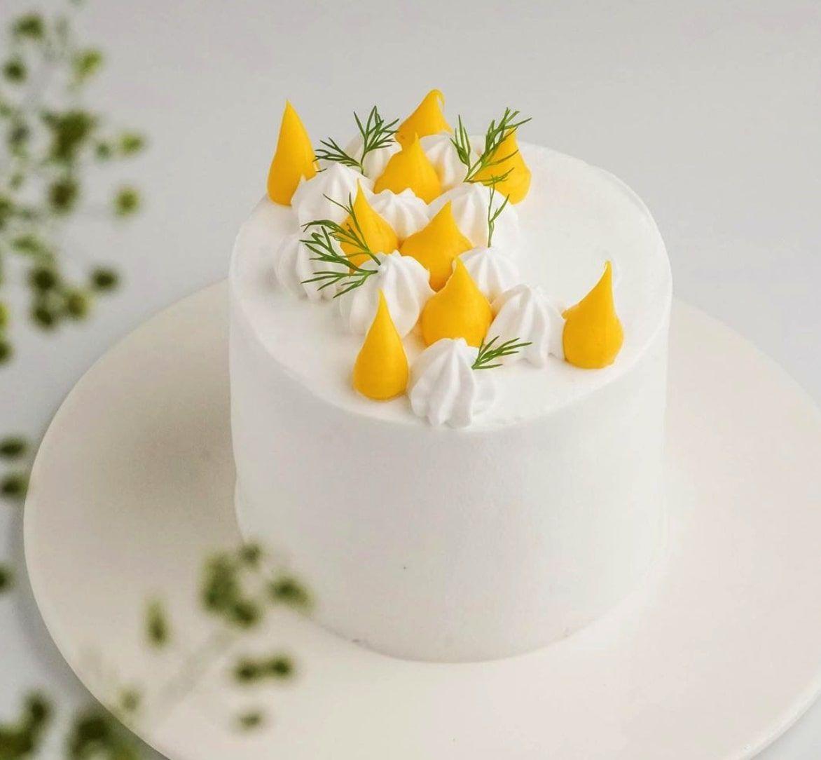 生日蛋糕thevegelab