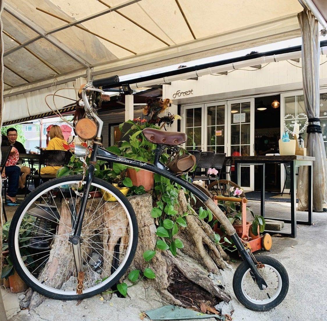 大埔cafe森林咖啡