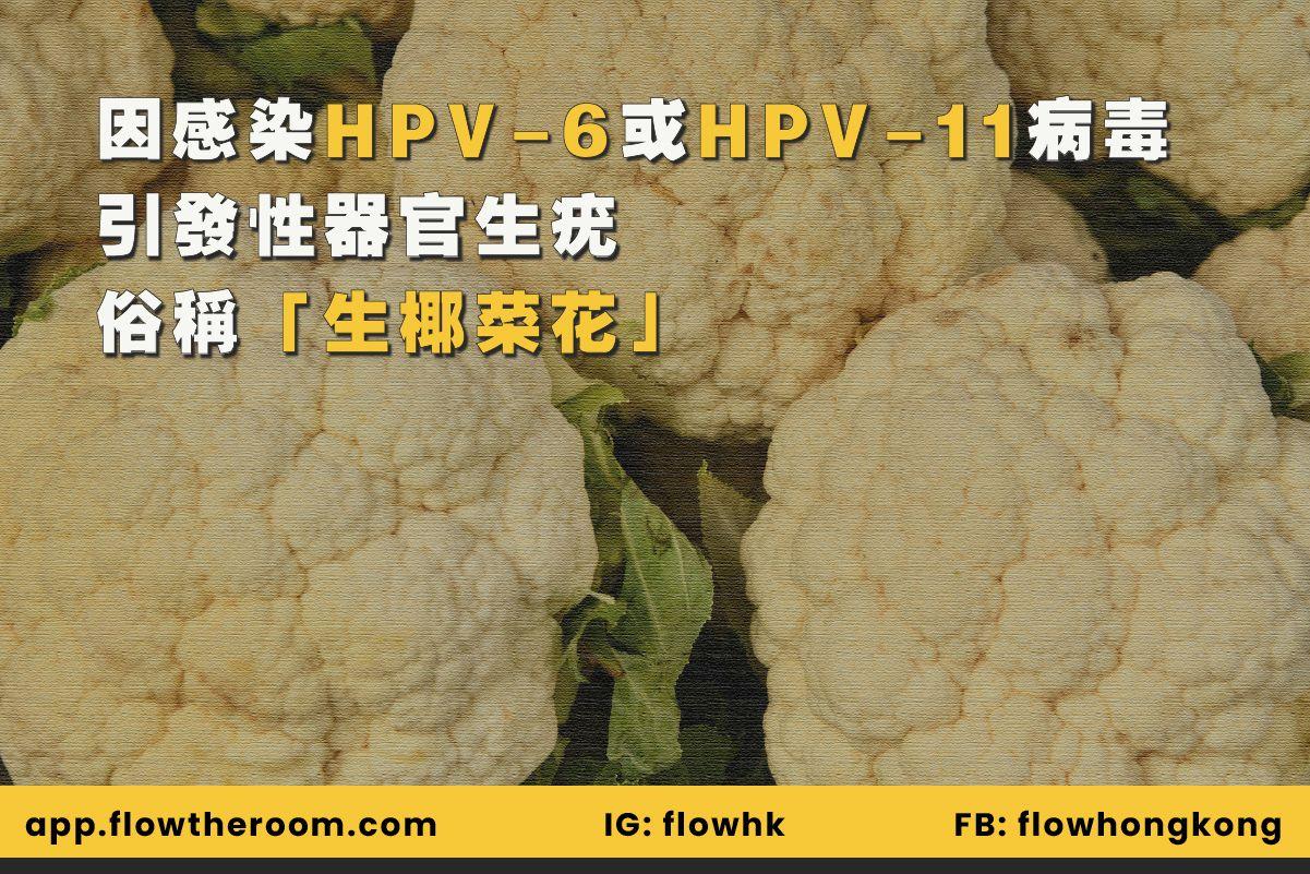 生椰菜花主要是因為受 HPV 第 6 型(HPV-6)及 11 型(HPV-11)感染
