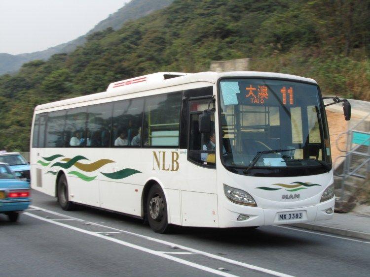 大澳交通巴士