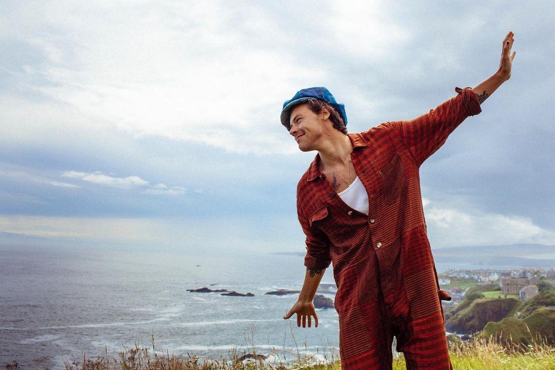 水瓶男星代表:Harry Styles(生日:2 月 1 日)